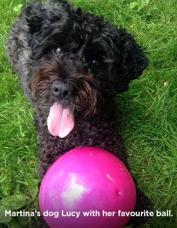 Martina's dog Lucy playing with her favourite ball.
