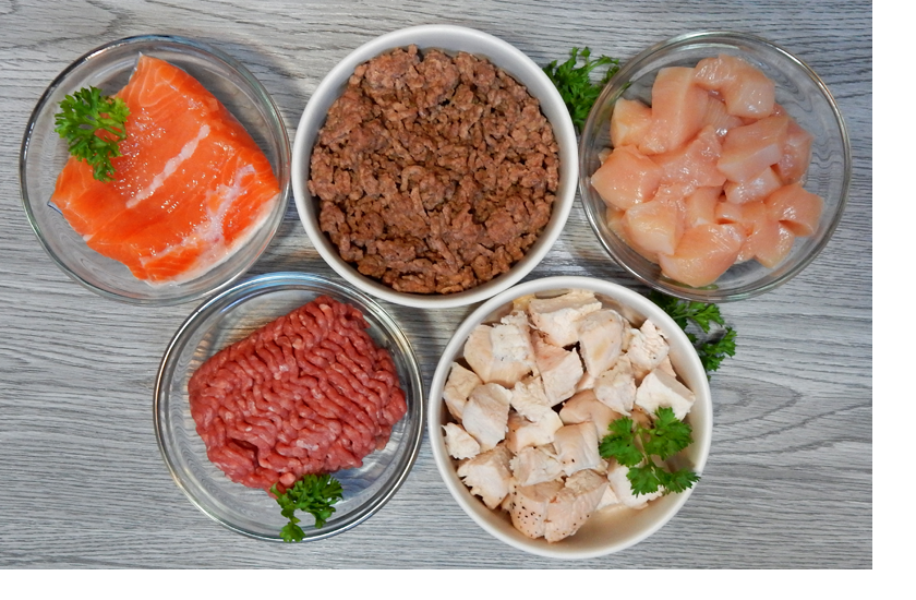 Protein Meat Ingredients