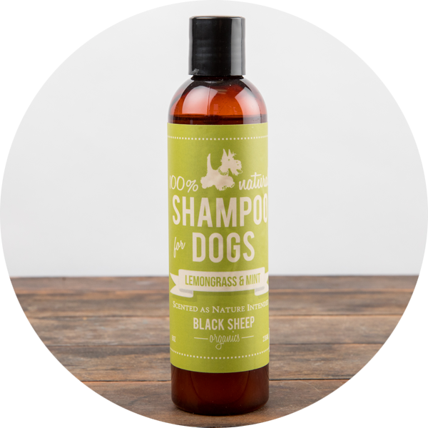 Black Sheep Organics Lemongrass and Mint Shampoo, 236ml