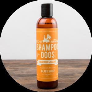 Black Sheep Organics Mandarin and Orange Shampoo, 236ml