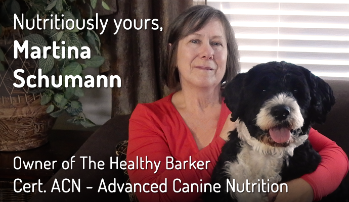 Martina Schumann, Owner of The Healthy Barker